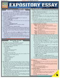 college application essay mla format cover letter for you     FAMU Online Argument Essay Outline Example Argumentative Essay Informal