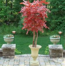 celebrate the season in style faux outdoor artificial trees
