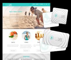 antsy ant web design website designer in honolulu hawaii
