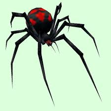 Black Widow Spiders Had A - petopia black widow spider