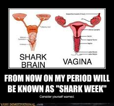 Shark Week Meme - from now on my period will be known as shark week very