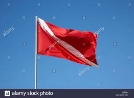 Florida Flag History Red And White Diver Down Flag Flying Against Blue Sky Florida Keys