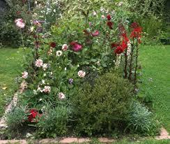 planting a raised flower bed gardening forum gardenersworld com