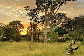 lodge of the week the safari index