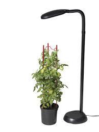 cfl grow lights for indoor plants cfl grow light full spectrum floor plant l gardeners com