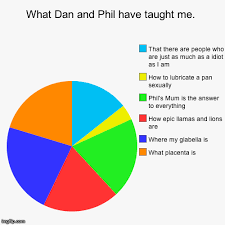 Dan And Phil Memes - dan and phil memes what dan and phil have taught me what placenta