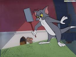40 best tom jerry images on jerry o connell toms