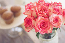 Valentines Flowers - extend the life of your valentine u0027s day flowers with these tips