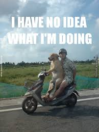 I Have No Idea What Im Doing Meme - i have no idea what i m doing by anthropoceneman meme center
