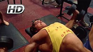 Chest And Shoulder - footage of arnold schwarzenegger chest shoulders