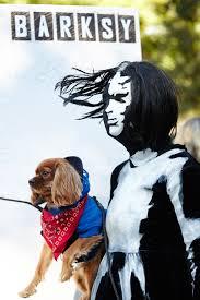 Halloween Costume Dog Halloween Costumes Pet Holiday Ideas