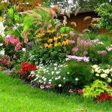 good florida landscaping ideas for front of house ideas amys office
