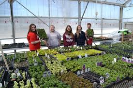 oelwein ffa greenhouse showing definite signs of spring gardening