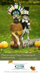 Thanksgiving Wishes For Friends Happy Thanksgiving U0026 Best Wishes From Cms