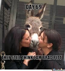 Crazy Ass Memes - kiss ass meme 28 images watchwwepaperviews wwe memes larry