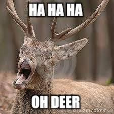 Oh Deer Meme - bad pun buck imgflip