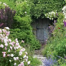 garden ideas designs and inspiration ideal home
