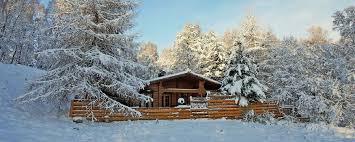 aviemore log cabins