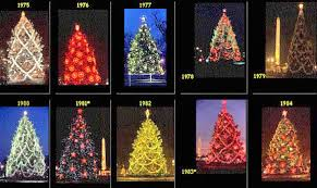pagan paradise christmas trees