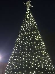 abbeville gets into spirit with annual tree lighting