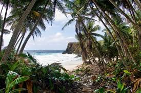 australia u0027s best island holidays top 20 island escapes