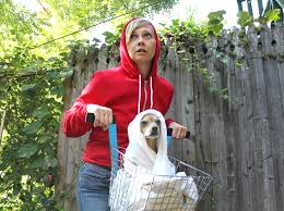 how to e t dog costume make