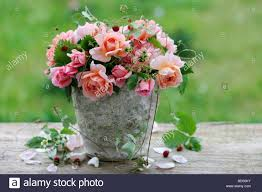arrangement of roses with wild strawberries stock photo royalty