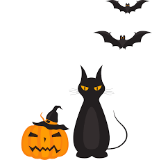 halloween bat png halloween special event tip top brain