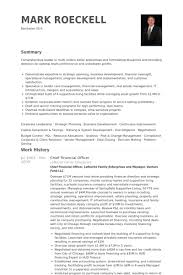 Compliance Officer Resume Sample by Chief Financial Officer Resume Samples Visualcv Resume Samples