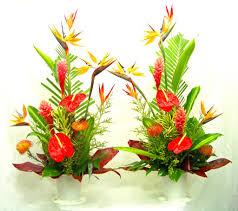 tropical flower arrangements tropical flower arrangements gallery tropical flower arrangements