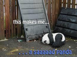 Sad Panda Meme - image 92708 sad panda know your meme