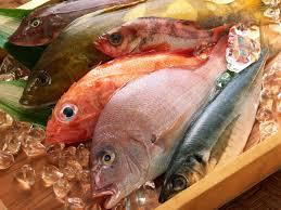 الاسماك والروبيان الماليزيSEA FOOD IN MALAYSIA Images?q=tbn:ANd9GcTMELNNEV7ycMxj6oRghdJGkFXK9bQfljZLwEYEqvB1P_1JSQkAOw