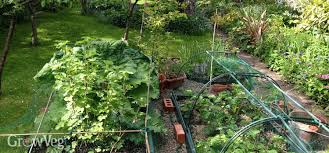 vegetable gardening instruction videos how to garden videos