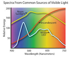 Incandescent Light Spectrum Do Led Lights Attract Bugs U2014 1000bulbs Com Blog