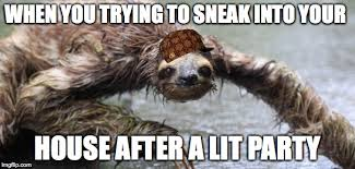 Sloth Meme Pictures - drunk sloth imgflip