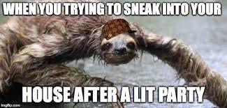 Funny Sloth Memes - drunk sloth imgflip