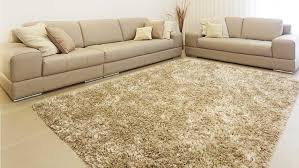 Area Rug Cleaning Service Should You Clean The Rug Yourself Diy Or Get It Professionally