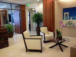 miami interior plant design service u0026 office plant rental