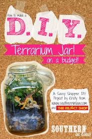 southern in law how to make a terrarium on a budget