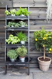 herb planter ideas 23 ideas for a super cool backyard vertical herb gardens herbs
