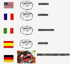 German Language Meme - i m not angry just logical mind over mined
