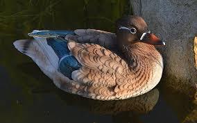 2 pieces a pair garden decoration animals resin duck artificial