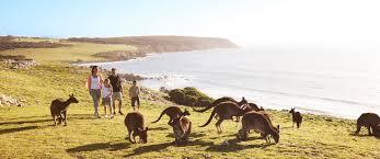 family holidays south australia package kangaroo island