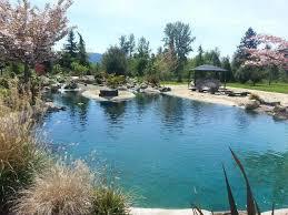 426 best swim pond images on pinterest swim backyard ideas and