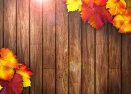 autumn leaves colorful wood texture autumn leaves tree hd wallpaper