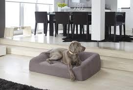 canapé lit pour chien panier pour chien lit tapis et canapé cat design