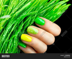 spring manicure fresh nature trendy green nails beautiful nail