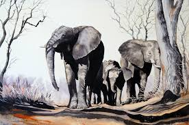 pam quinlan u2013 water colours various 570 x 400 the lonehill