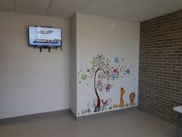 cat veterinary hospital in columbus ohio is now open purrfect care cat boarding cat tv and wall mural