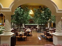 14ft black olive trees make be leaves